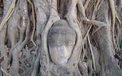 A következő városban: Ayutthaya