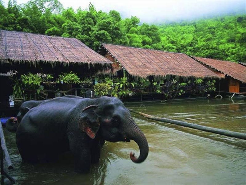 桂河丛林木排旅游套餐